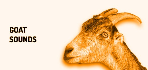 Goat sounds | Orange Free Sounds