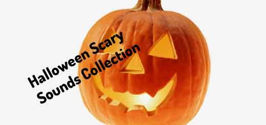 Halloween Scarry Sounds | Orange Free Sounds